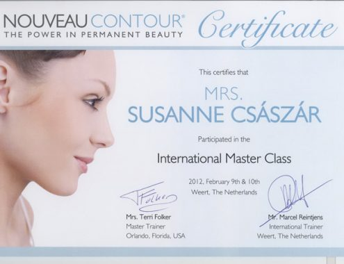 Master certificate 2012.jpg1