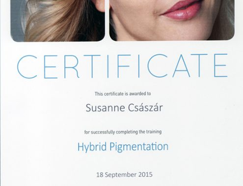 hybrid_pigmentation_certificate_csaszar_zsuzsanna_2015
